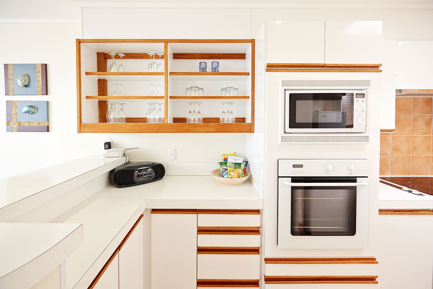 Pioneer_Apartments_Waterfront_MidLevel_Kitchen.jpg